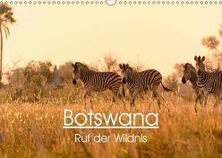 Botswana – Ruf der Wildnis (Wandkalender 2019 DIN A3 quer) von Maria-Lisa Stelzel,  Mag.