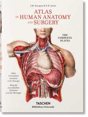 Bourgery. Atlas der menschlichen Anatomie und der Chirurgie
