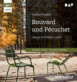 Bouvard und Pécuchet von Fischer,  Ernst Wilhelm, Flaubert,  Gustave, Lauffen,  Richard