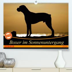 Boxer im Sonnenuntergang (Premium, hochwertiger DIN A2 Wandkalender 2020, Kunstdruck in Hochglanz) von Janetzek,  Yvonne