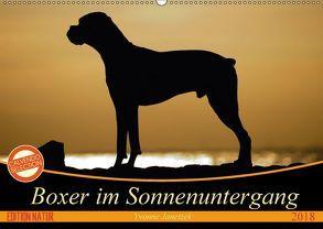 Boxer im Sonnenuntergang (Wandkalender 2018 DIN A2 quer) von Janetzek,  Yvonne