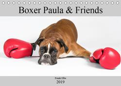 Boxerhündin Paula and Friends (Tischkalender 2019 DIN A5 quer) von Elbe,  Frank