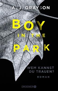 Boy in the Park – Wem kannst du trauen? von Ebnet,  Karl-Heinz, Grayson,  A.J.