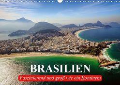 Brasilien. Faszinierend und groß wie ein Kontinent (Wandkalender 2019 DIN A3 quer) von Stanzer,  Elisabeth