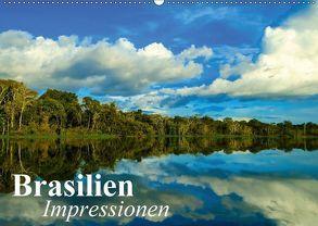 Brasilien. Impressionen (Wandkalender 2018 DIN A2 quer) von Stanzer,  Elisabeth