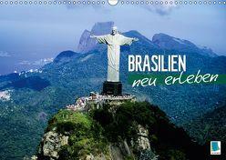 Brasilien neu erleben (Wandkalender 2019 DIN A3 quer) von CALVENDO