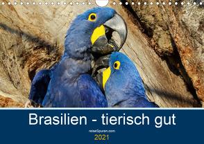 Brasilien tierisch gut 2021 (Wandkalender 2021 DIN A4 quer) von Bergwitz,  Uwe