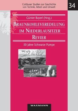 Braunkohleveredelung im Niederlausitzer Revier von Bayerl,  Günter