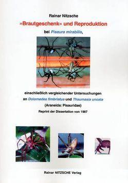 'Brautgeschenk' und Reproduktion bei Pisaura mirabilis, einschließlich vergleichender Untersuchungen an Dolomedes fimbriatus und Thaumasia uncata (Araneida: Pisauridae) von Nitzsche,  Rainar