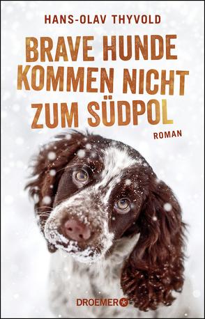 Brave Hunde kommen nicht zum Südpol von Brunstermann,  Andreas, Thyvold,  Hans-Olav