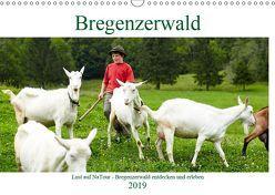 Lust auf NaTour – Bregenzerwald (Wandkalender 2019 DIN A3 quer) von Riedmiller,  Andreas