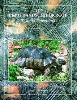 Breitrandschildkröte von Rogner,  Manfred