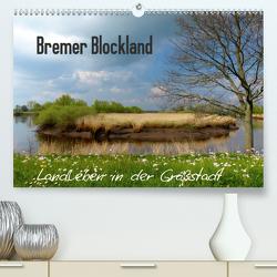 Bremer Blockland – Landleben in der Großstadt (Premium, hochwertiger DIN A2 Wandkalender 2021, Kunstdruck in Hochglanz) von M. Laube,  Lucy