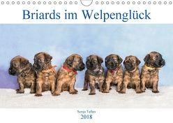 Briards im Welpenglück (Wandkalender 2018 DIN A4 quer) von Teßen,  Sonja