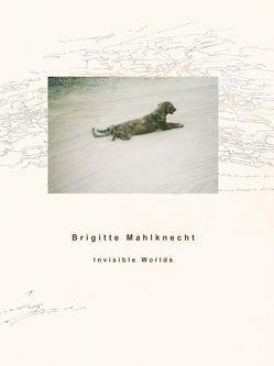 Brigitte Mahlknecht, Invisible Worlds von Mahlknecht,  Brigitte