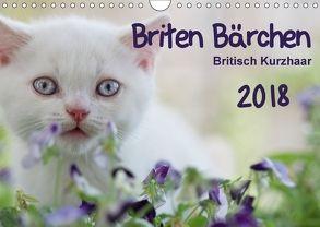 Briten Bärchen – Britsch Kurzhaar 2018 (Wandkalender 2018 DIN A4 quer) von Bollich,  Heidi