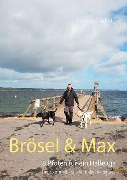 Brösel & Max von Ludwig,  Andree