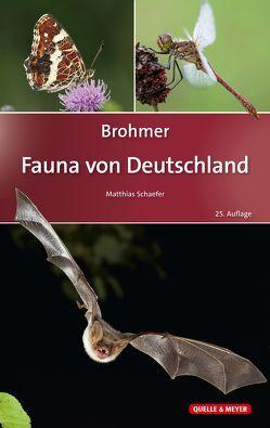 Brohmer – Fauna von Deutschland von Schaefer,  Matthias