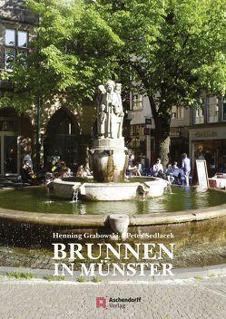 Brunnen in Münster von Grabowski,  Henning, Sedlacek,  Peter