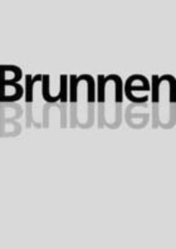 Brunnen in Saarbrücken von Brandolini,  Andreas, Dittmann,  Marlen, Enzweiler,  Jo, Grandmontagne,  Michael, Hanus,  Katja, Heinz,  D, Maas,  Claudia, Thiess,  Alexa
