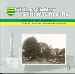 Brunnen, Mühlen und Gewässer von Back,  Nikolaus, Branz,  Norbert, Enkelmann,  Reiner