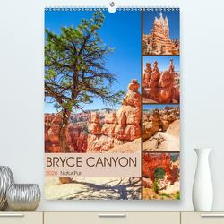 BRYCE CANYON Natur Pur (Premium, hochwertiger DIN A2 Wandkalender 2020, Kunstdruck in Hochglanz) von Viola,  Melanie