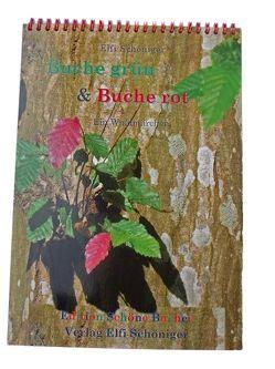 Buche grün & Buche rot von Schöniger,  Elfi