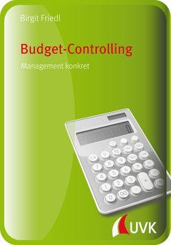 Budget-Controlling von Friedl,  Birgit