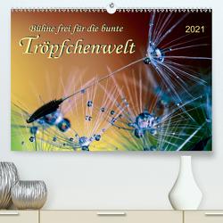 Bühne frei für die bunte Tröpfchenwelt (Premium, hochwertiger DIN A2 Wandkalender 2021, Kunstdruck in Hochglanz) von Roder,  Peter