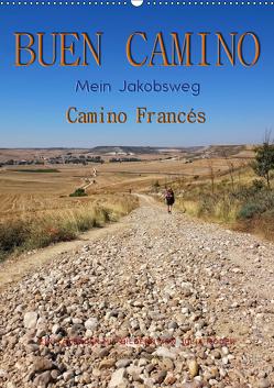 Buen Camino – Mein Jakobsweg – Camino Francés (Wandkalender 2019 DIN A2 hoch) von Roder,  Peter