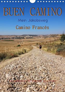 Buen Camino – Mein Jakobsweg – Camino Francés (Wandkalender 2020 DIN A4 hoch) von Roder,  Peter