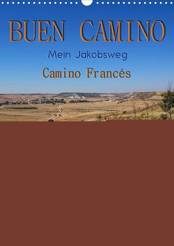 Buen Camino – Mein Jakobsweg – Camino Francés (Wandkalender 2021 DIN A3 hoch) von Roder,  Peter