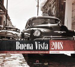 Buena Vista 2018