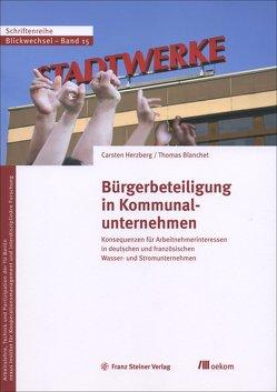 Bürgerbeteiligung in Kommunalunternehmen von Blanchet,  Thomas, Herzberg,  Carsten