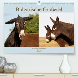 Bulgarische Großesel – Schwarze Schönheiten (Premium, hochwertiger DIN A2 Wandkalender 2021, Kunstdruck in Hochglanz) von Bölts,  Meike