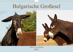 Bulgarische Großesel – Schwarze Schönheiten (Wandkalender 2021 DIN A4 quer) von Bölts,  Meike