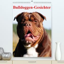 Bulldoggen-Gesichter (Premium, hochwertiger DIN A2 Wandkalender 2020, Kunstdruck in Hochglanz) von Stanzer,  Elisabeth