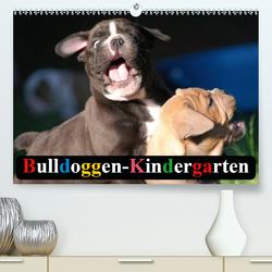 Bulldoggen-Kindergarten (Premium, hochwertiger DIN A2 Wandkalender 2021, Kunstdruck in Hochglanz) von Stanzer,  Elisabeth