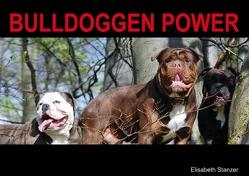 Bulldoggen Power (Posterbuch DIN A2 quer) von Stanzer,  Elisabeth