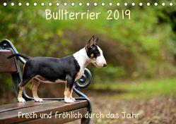 Bullterrier 2019 Frech und fröhlich durch das Jahr (Tischkalender 2019 DIN A5 quer)