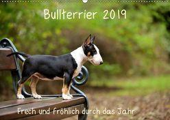 Bullterrier 2019 Frech und fröhlich durch das Jahr (Wandkalender 2019 DIN A2 quer) von Janetzek,  Yvonne