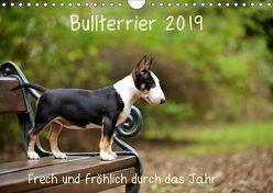 Bullterrier 2019 Frech und fröhlich durch das Jahr (Wandkalender 2019 DIN A4 quer)