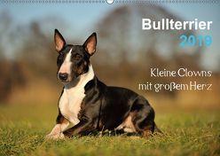 Bullterrier 2019 – Kleine Clowns mit großem Herz (Wandkalender 2019 DIN A2 quer) von Janetzek,  Yvonne
