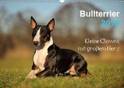 Bullterrier 2019 – Kleine Clowns mit großem Herz (Wandkalender 2019 DIN A3 quer) von Janetzek,  Yvonne