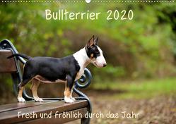 Bullterrier 2020 Frech und fröhlich durch das Jahr (Wandkalender 2020 DIN A2 quer) von Janetzek,  Yvonne