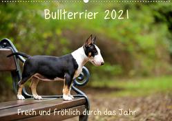 Bullterrier 2021 Frech und fröhlich durch das Jahr (Wandkalender 2021 DIN A2 quer) von Janetzek,  Yvonne