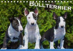Bullterrier (Tischkalender 2019 DIN A5 quer) von Bullterrier
