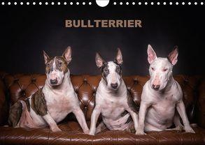 Bullterrier (Wandkalender 2018 DIN A4 quer) von Schubert,  Sven