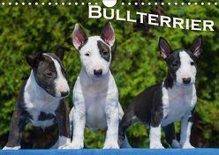 Bullterrier (Wandkalender 2018 DIN A4 quer) von Bullterrier,  k.A.