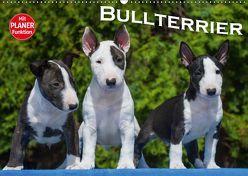 Bullterrier (Wandkalender 2019 DIN A2 quer) von Bullterrier